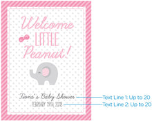 Load image into Gallery viewer, Personalized Poster (18x24) - Little Peanut (Blue or Pink)