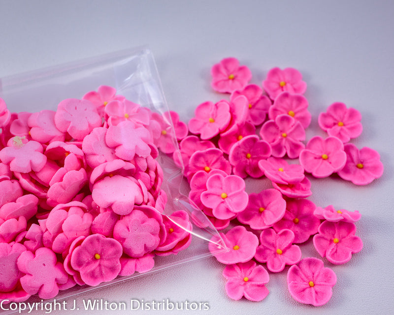 FORGET-ME-NOT ROYAL PETITE 88PC PINK