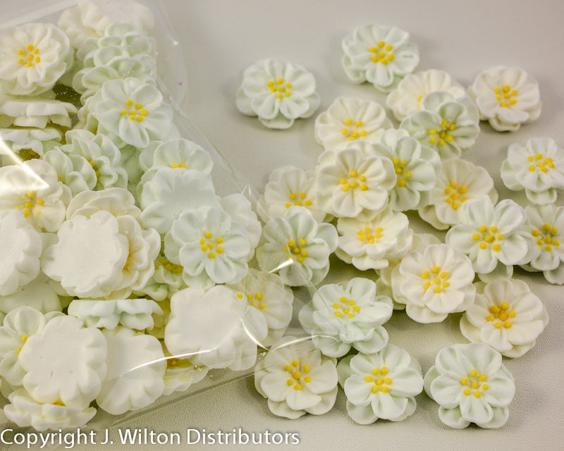 DAINTY BESS ROYAL SMALL 60PC WHITE
