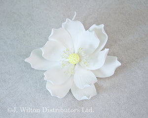 "LOTUS 5"" 1PC. WHITE"