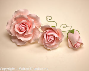 ROSE CLASSIC GARDEN 3SIZE/3PC PINK