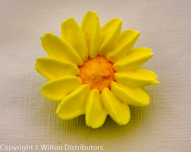 DAISY MEDIUM ROYAL 24PC YELLOW