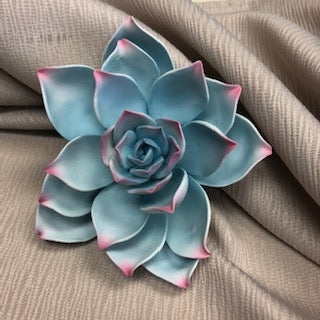 SUCCULENT DESSERT BLOOM AQUA/VIOLET 5 INCH 1PC