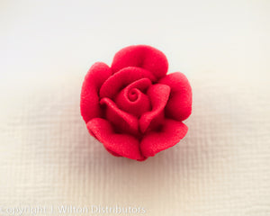 "ROSE 3/4"" 66PC RED"