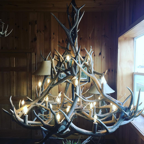 Crooked Creek Antler Art Light