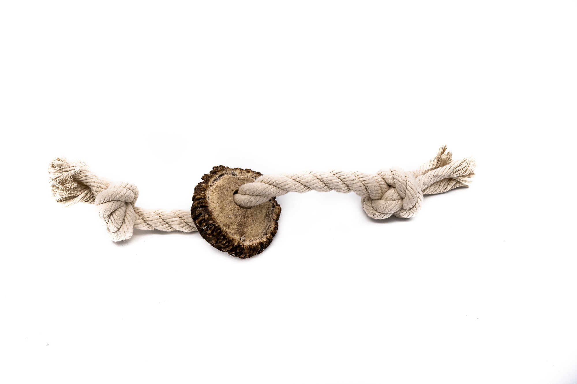 Large Burr Antler Rope Toy