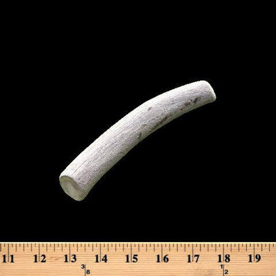 Bulk Medium Economy Antler Dog Chew