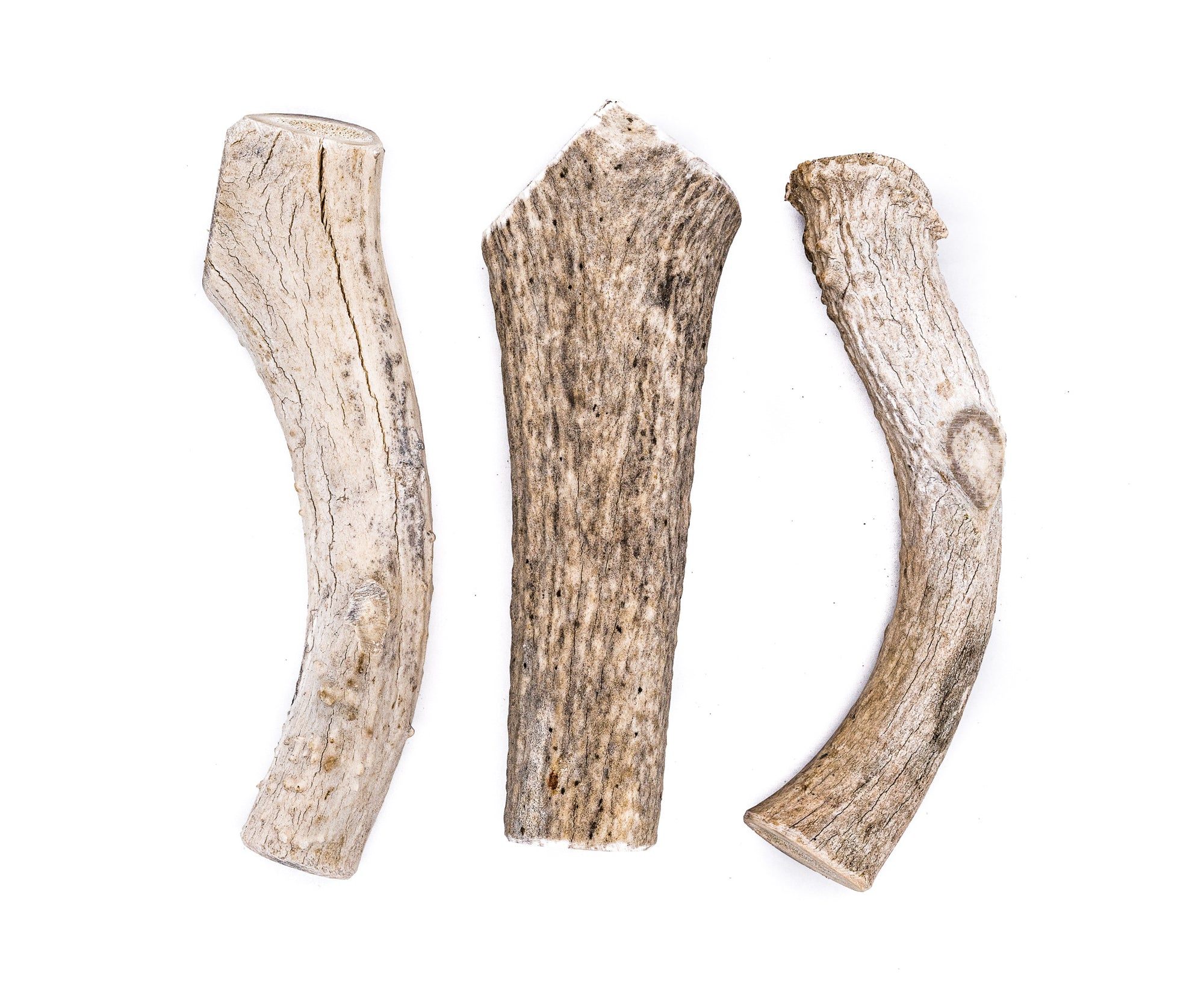 X-Large Economy Antler Dog Chew