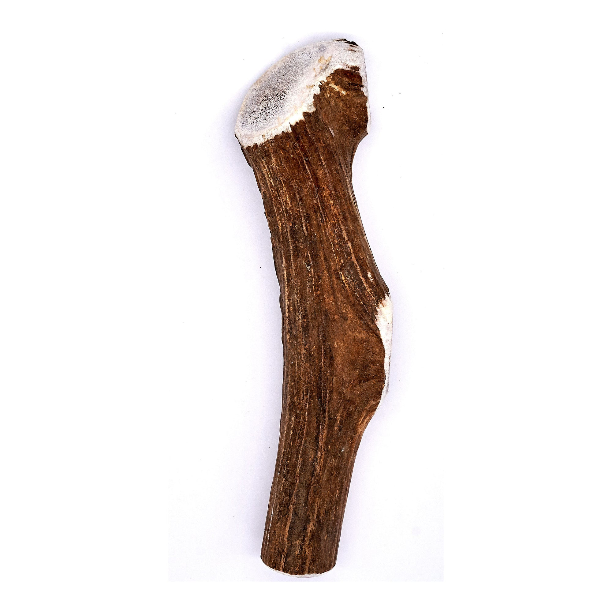 X-Large Elk Antler Dog Chew