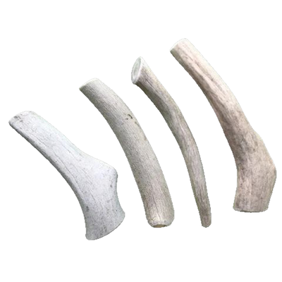 Medium Economy Antler Dog Chew