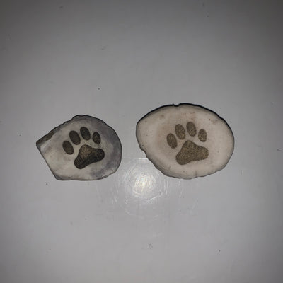 Antler Magnet with Engraved Paw Print