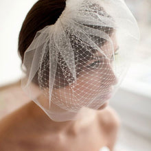 Load image into Gallery viewer, White Birdcage Veil