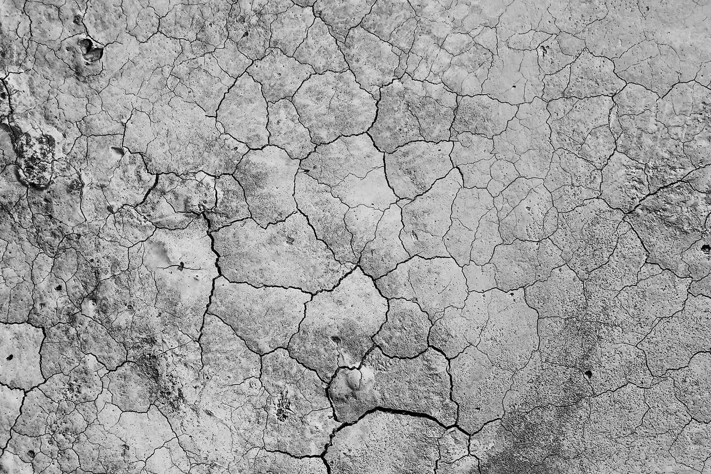 Grey dry cracked earth