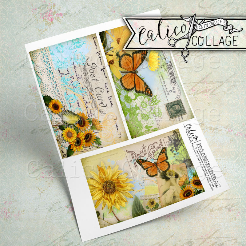 Sunny Morning Journaling Cards