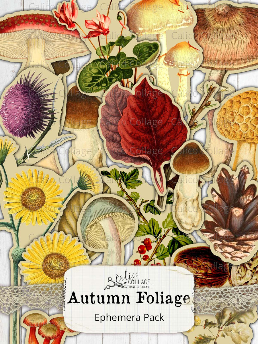 Autumn Foliage Fussy Cut Digital Collage Sheet