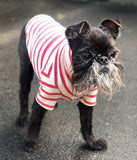 Stripy Dog T-shirt Red and Cream, 100% Organic Cotton.