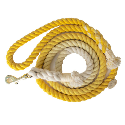 Ombre Dog Leash Yellow & White