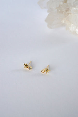 Stargaze Earrings in Gold - Moonstone