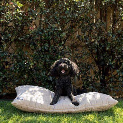 Brolly Sheets Buddy Dog Cover Faux Suade