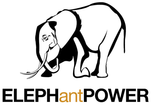 ELEPHantPOWER At-Home Classes with Vince Poscente