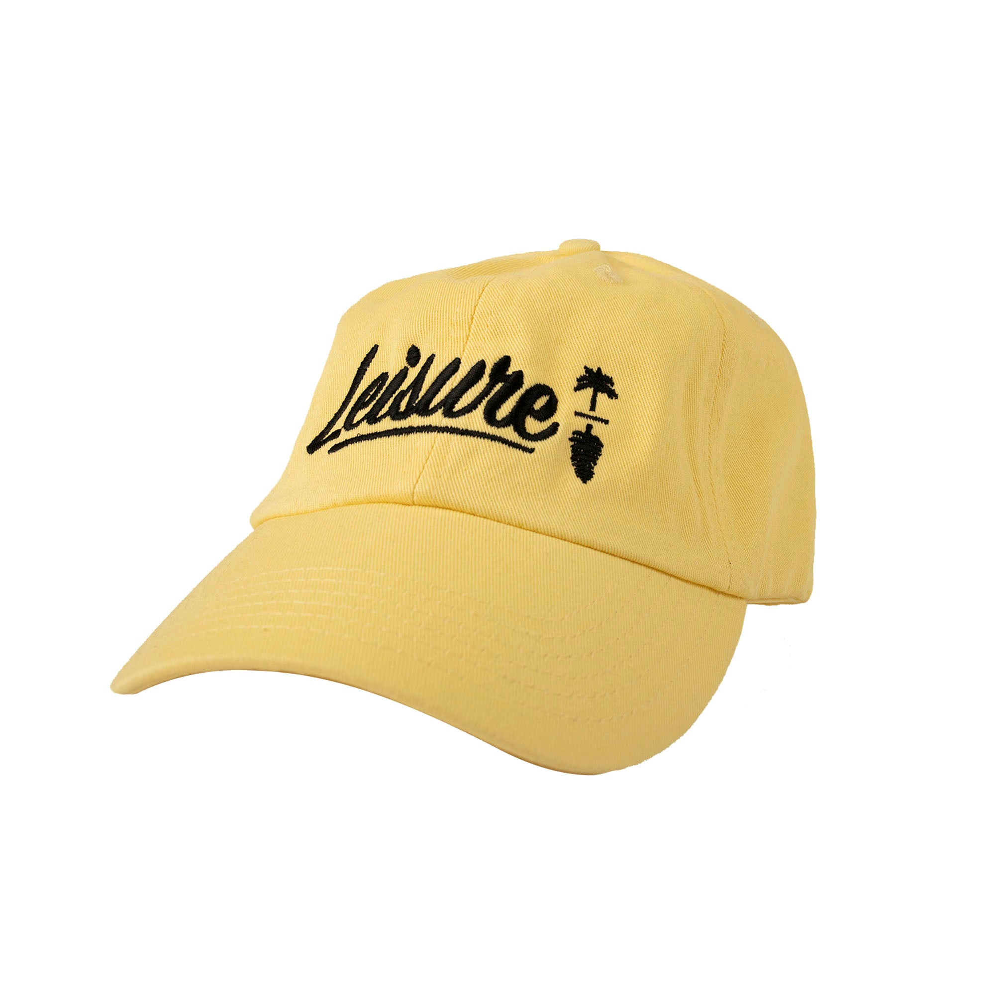 Classic Journal Dad Hat