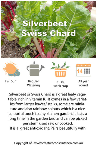 Information Cards - Silverbeet / Swiss Chard