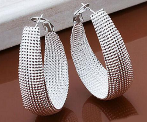 Image of 925 Sterling Silver Earrings European Style