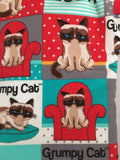 Oven mitts, Grumpy Cat! A pair of Fully Functional Oven Gloves!