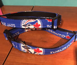Dog collar, Blue Jays collar for your dog or puppy!