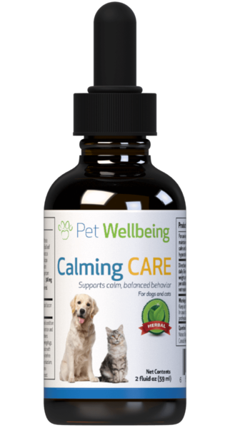 Calming Care for Cat Anxiety and Stress