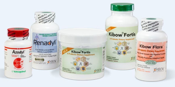 kibow-products__89655.1481674408.1280.1280__56018.1481674479.1280.1280__72643.1481675150.1280.1280