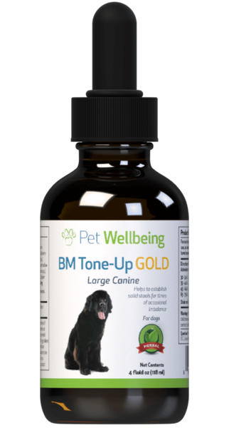 BM Tone-Up Gold - Dog Diarrhea Support (1 bottle = 2oz, 4oz)