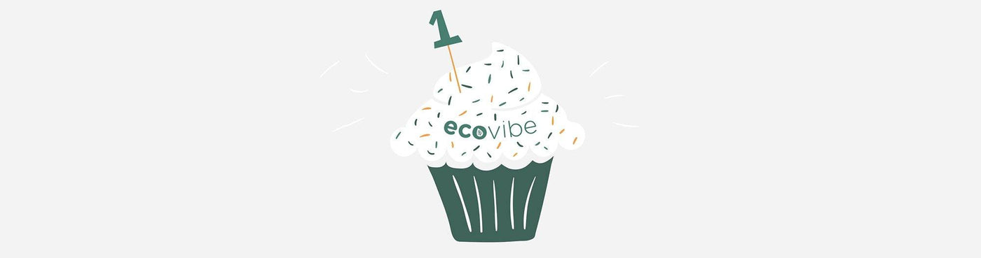 Everything we've done in our first 12 months! - EcoVibe