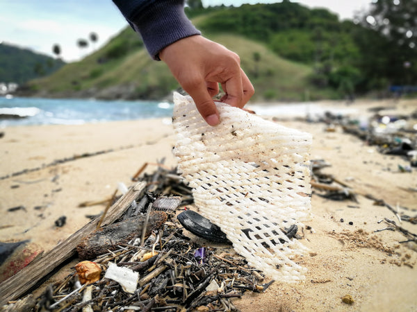 Plastic cleanup on a beach, plastic mesh in someone's hand