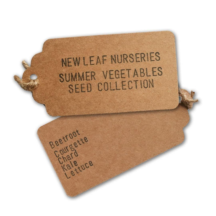 Summer Vegetable Seed Selection