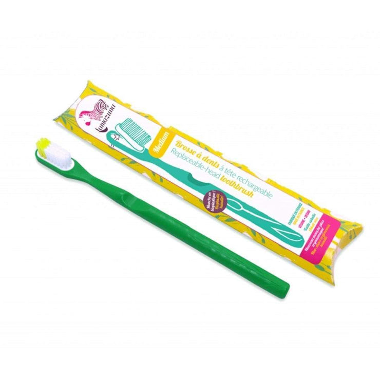 Replaceable-head Toothbrush - Medium