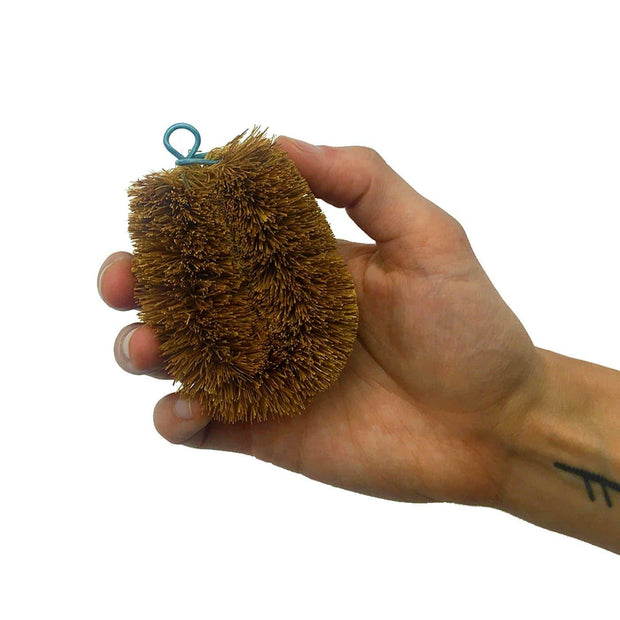 Coconut Mini Scrub Brush