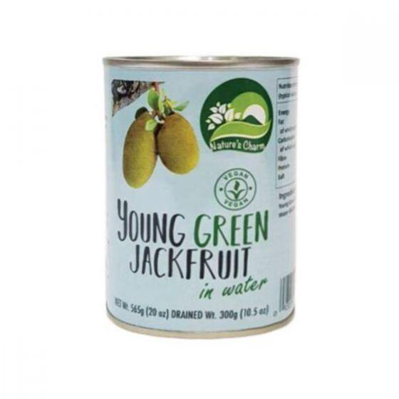Young Green Jackfruit In Salted Water - 565g