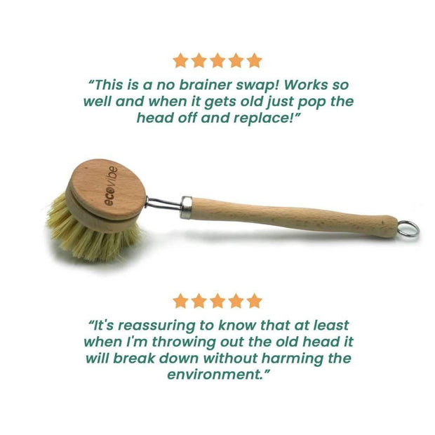 Wooden Dish Brush with Cactus Bristles