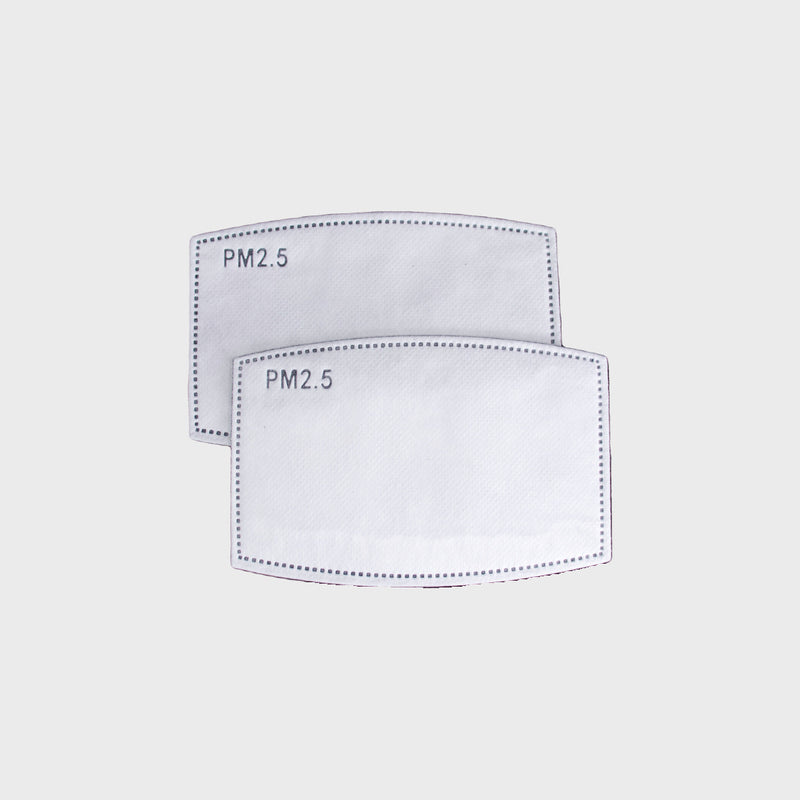 Mask Filter (Pack of 2)