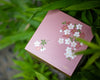 2 Tier Cherry Blossom Square Lunch Bento | Pink