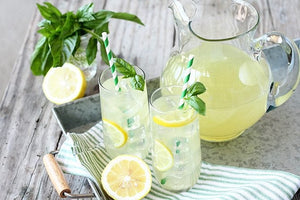 Bubbs Seltzer Recipes List