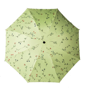 Foldable Umbrellas
