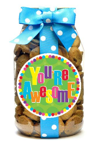 Chocolate Chip - You're Awesome
