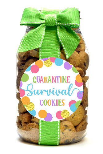 Chocolate Chip - Script Letter Quarantine Cookies
