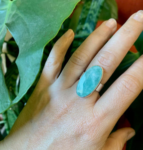Oval Amazonite and sterling silver ring on hand in front of plant.