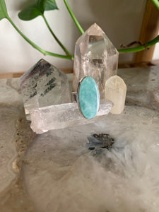 Oval Amazonite and sterling silver Ring on quartz crystal with crystal points and plant behind it.