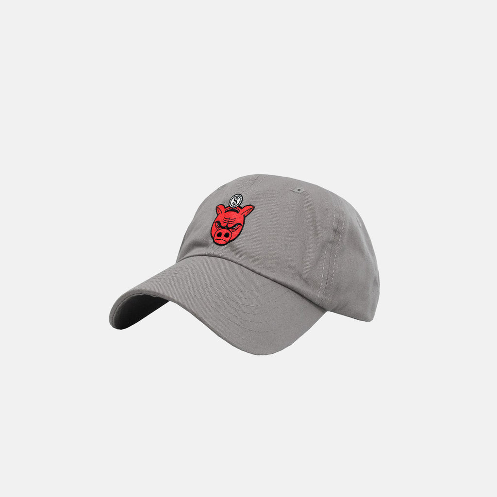 BANK HEADS DAD HAT (GRAY)