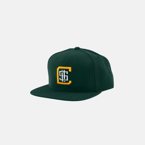 CHA-CHING SNAPBACK HAT (SPRUCE/YELLOW) - 1