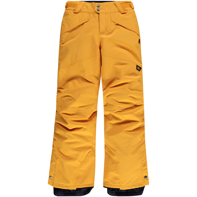 Boys Anvil Snow Pants - Old Gold